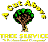 A Cut Above Tree Service LLC - South Jersey Tree Removal Trimming Pruning